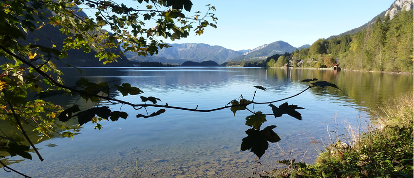 view_of_lake_by_water